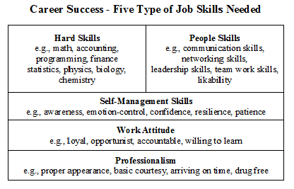 Career Success 5 Types of Job Skills Needed Career Success   How to Succeed like an Executive